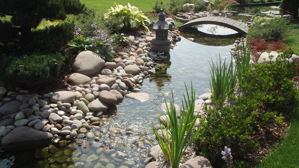 Bassins et jardins aquatiques sur douai valenciennes et for Bassin aquatique jardin